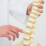 Spinal Manipulation Training courses